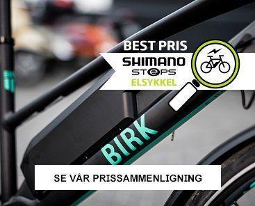 Birk E-Raceway
