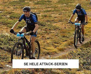 Birk Attack